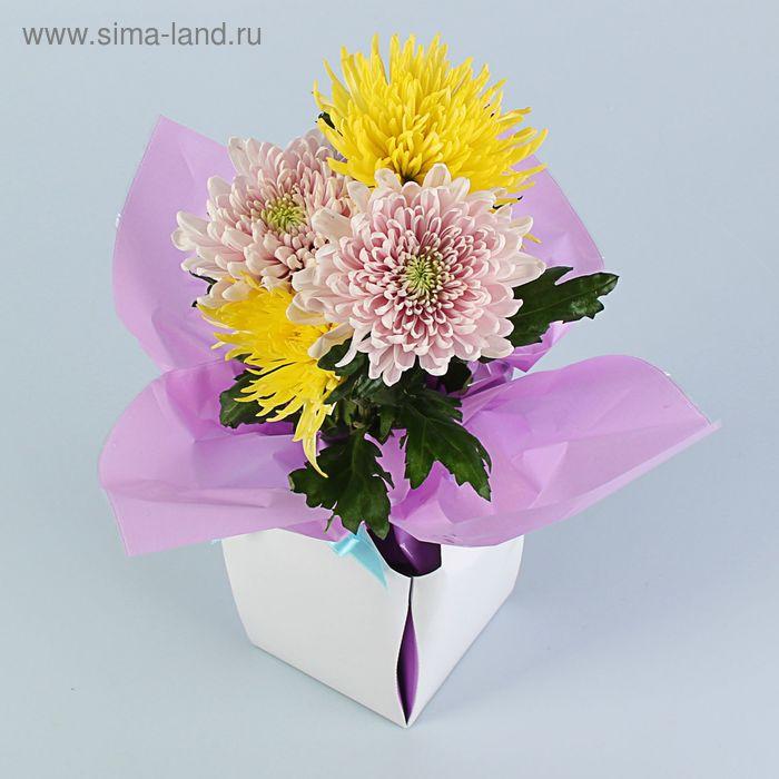 Коробка для цветов 2в1, 9х12 см, сборная, сиреневый