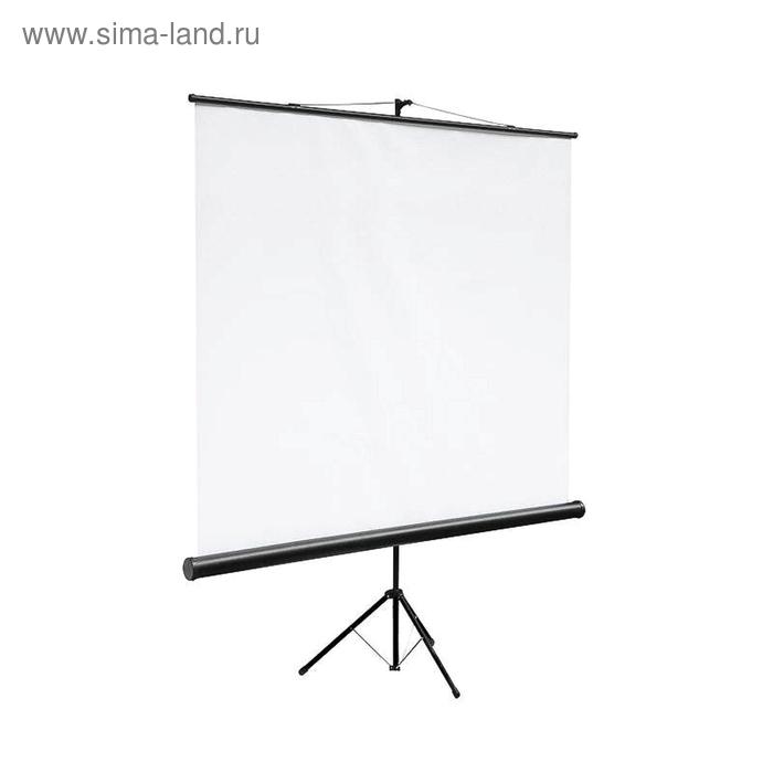 Экран Digis мобильный 200х200, (DSKC-1103)