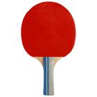 Ракетка для настольного тенниса GREEN , OТ-19 в чехле