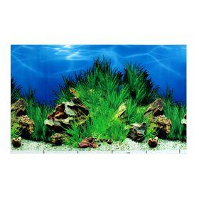 Фон для аквариума, 30 см, рулон 25 м