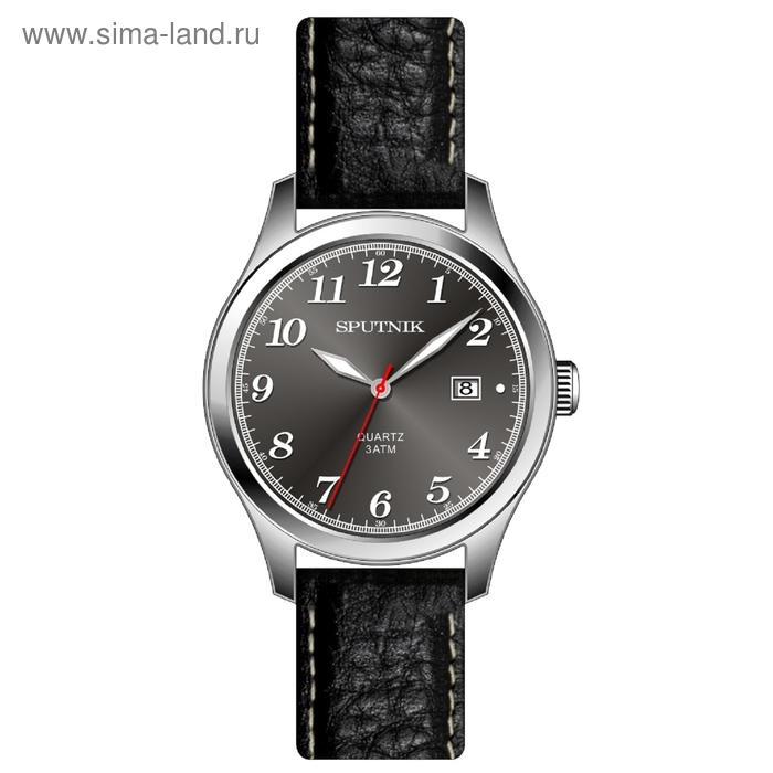 """Часы наручные мужские """"Спутник"""", темно-серый циферблат, черный ремешок"""