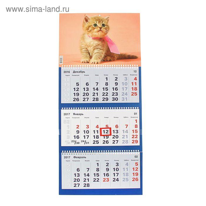"""Календарь Трио квартальный """"Домашние любимцы"""" 31х69 см"""