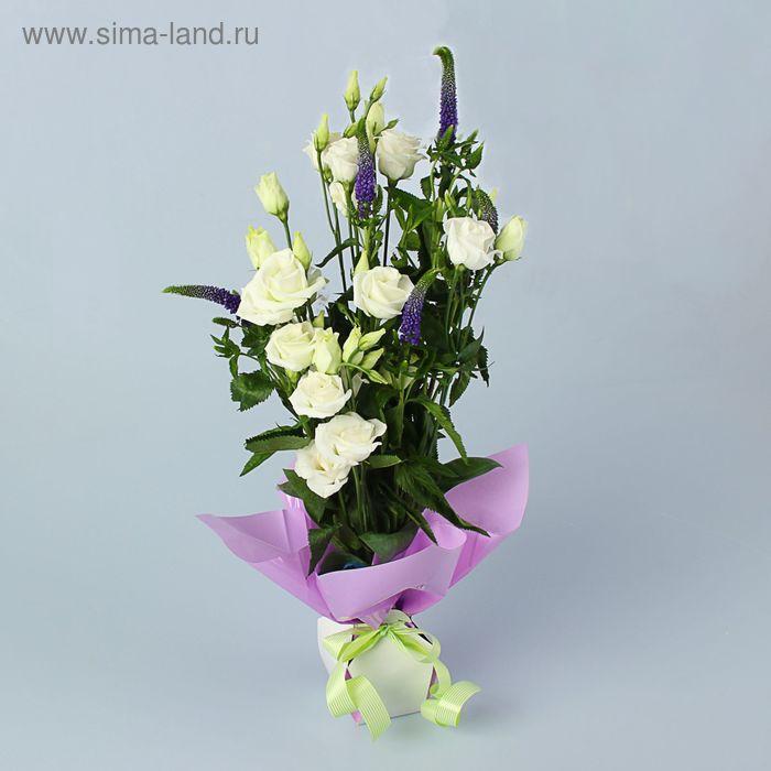 Коробка для цветов 2в1, 6х9 см, сборная, сиреневый