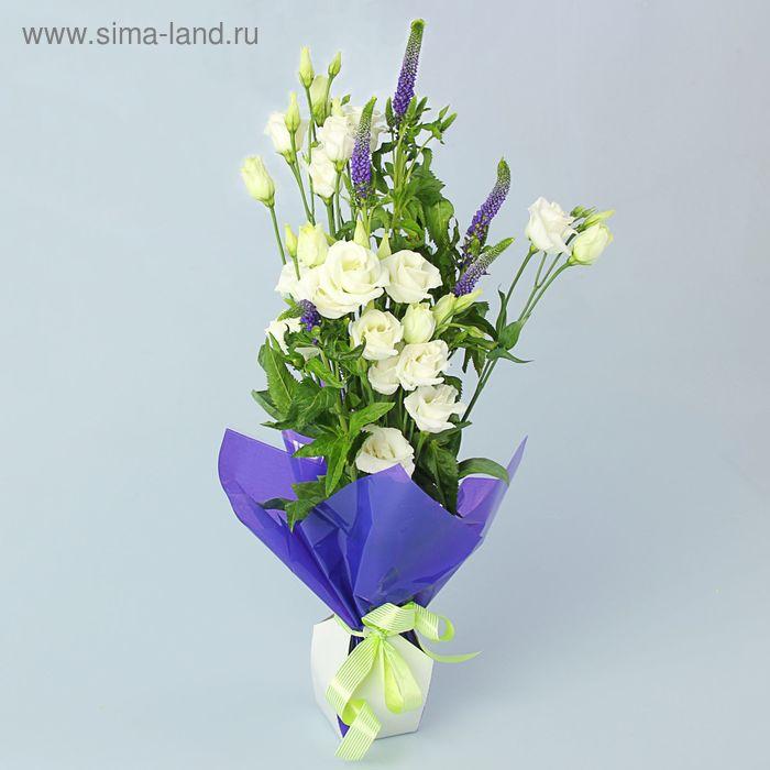 Коробка для цветов 2в1, 6х9 см, сборная, фиолетовый