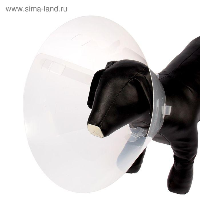 Воротник пластиковый для собак и кошек, размер M, 38-44 х 20 см