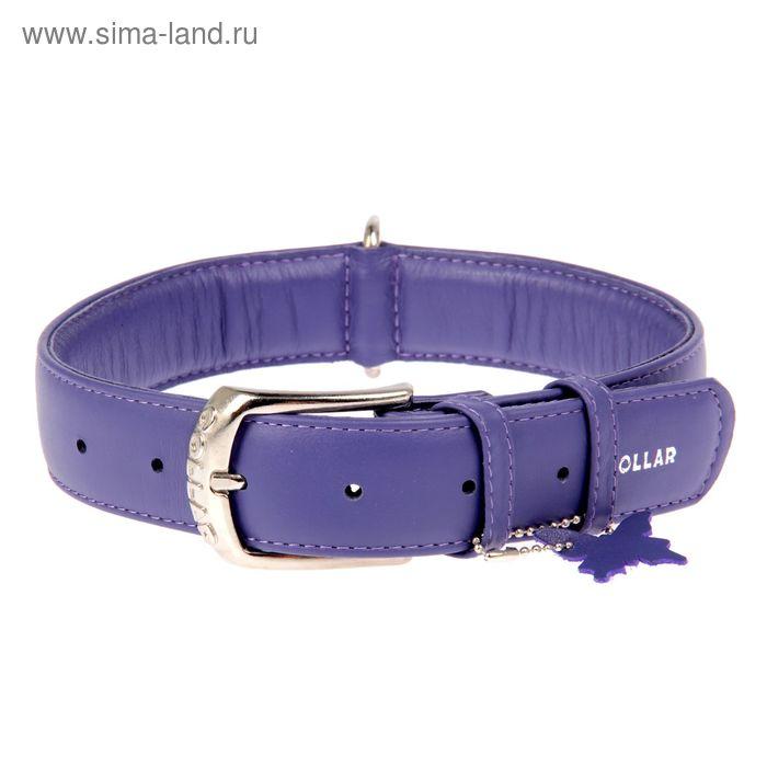 Ошейник неукрашенный CoLLaR Glomour, 46-60 х 3,5 см, фиолетовый