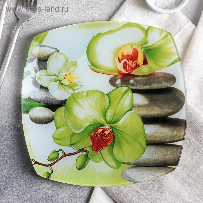 """Тарелка обеденная 23 см """"Зеленая орхидея"""""""