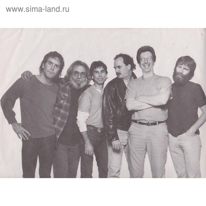 Виниловая пластинка The Grateful Dead - In The Dark