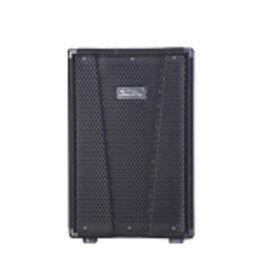 Пассивная акустическая система Soundking KJ12, 250ВТ Ош