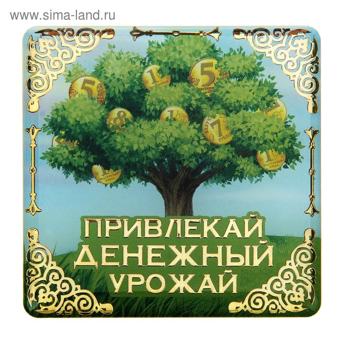 """Магнит денежный """"Привлекай денежный урожай"""""""