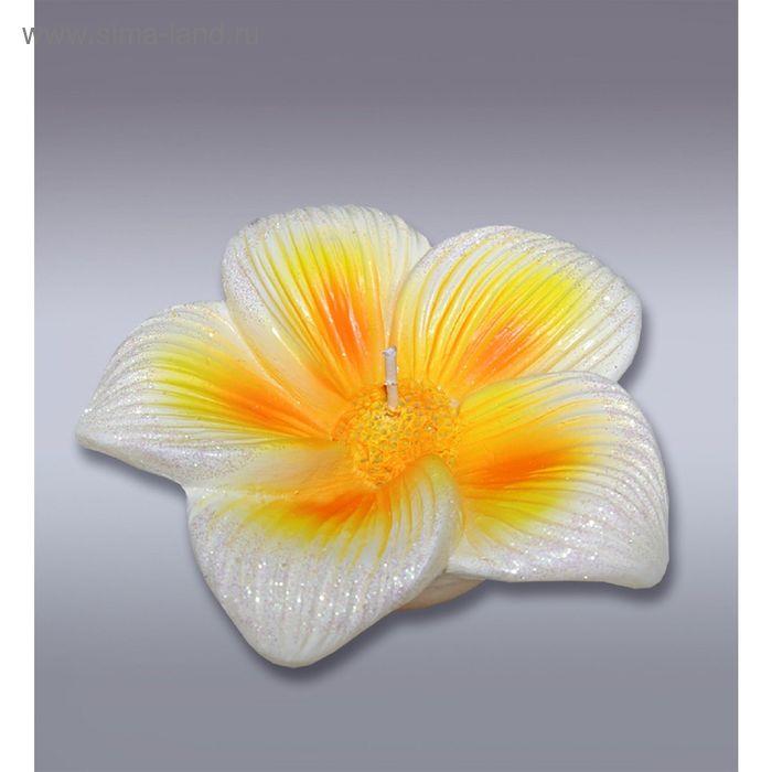 Свеча тропический цветок
