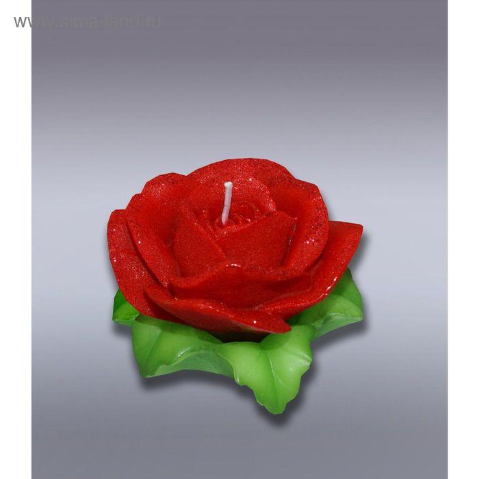 Свеча роза красная на листьях