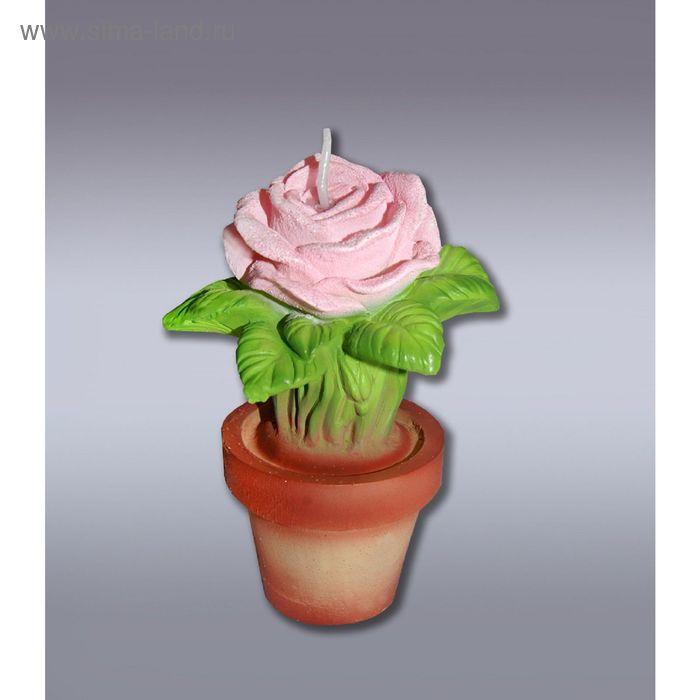 Свеча роза розовая в горшке