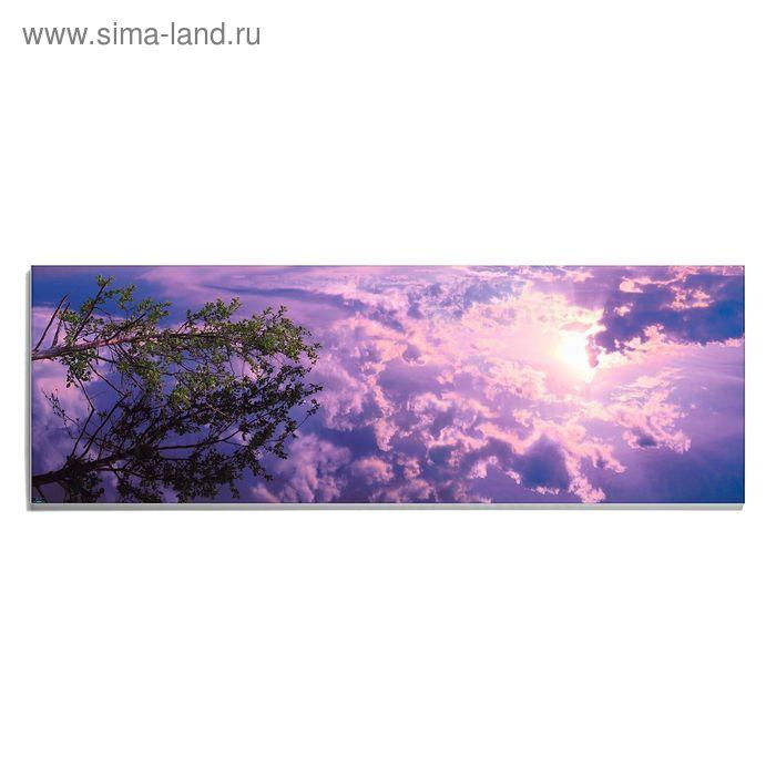 Авторская фотокартина «Стремясь к солнцу»