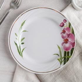"""Тарелка мелкая 20 см """"Голубка. Бамбуковая орхидея"""""""
