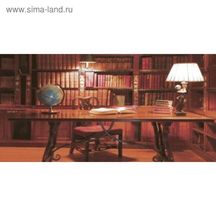 Вставка керамическая 50х25см Тоскана коричневый 10-05-15-714