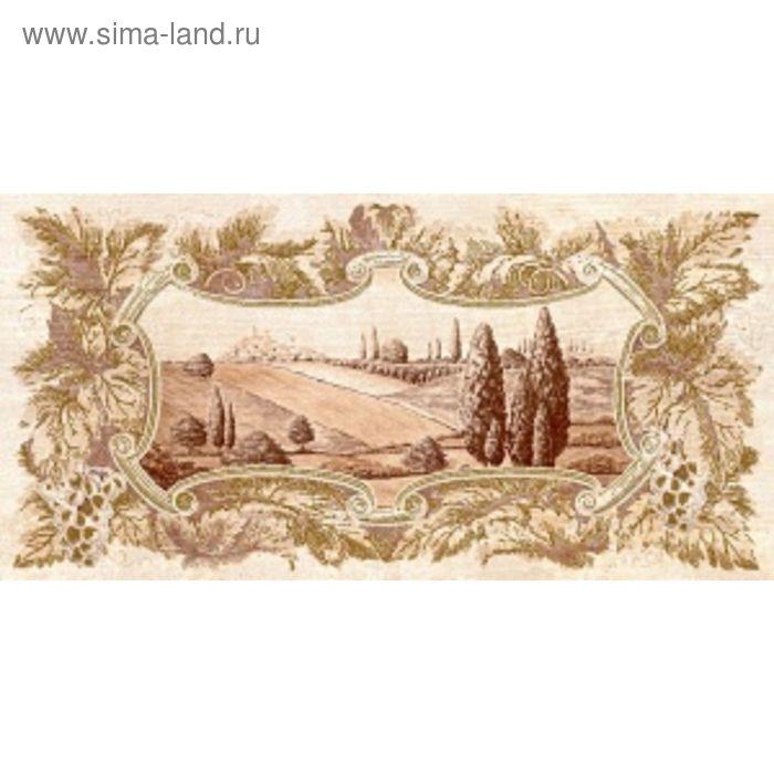 Вставка керамическая 50х25см Тоскана коричневый 10-03-15-717