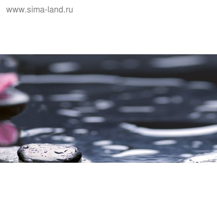 Вставка керамическая 50х25см Болеро Орхидея черный 10-04-04-162-2