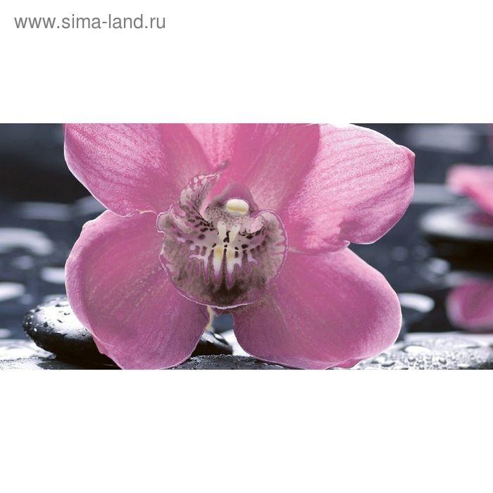 Вставка керамическая 50х25см Болеро Орхидея черный 10-04-04-162-1