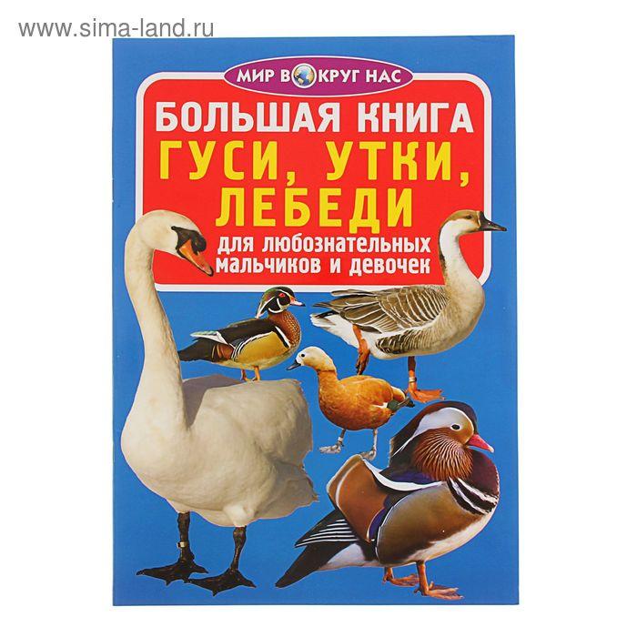 Большая книга «Гуси, утки, лебеди»