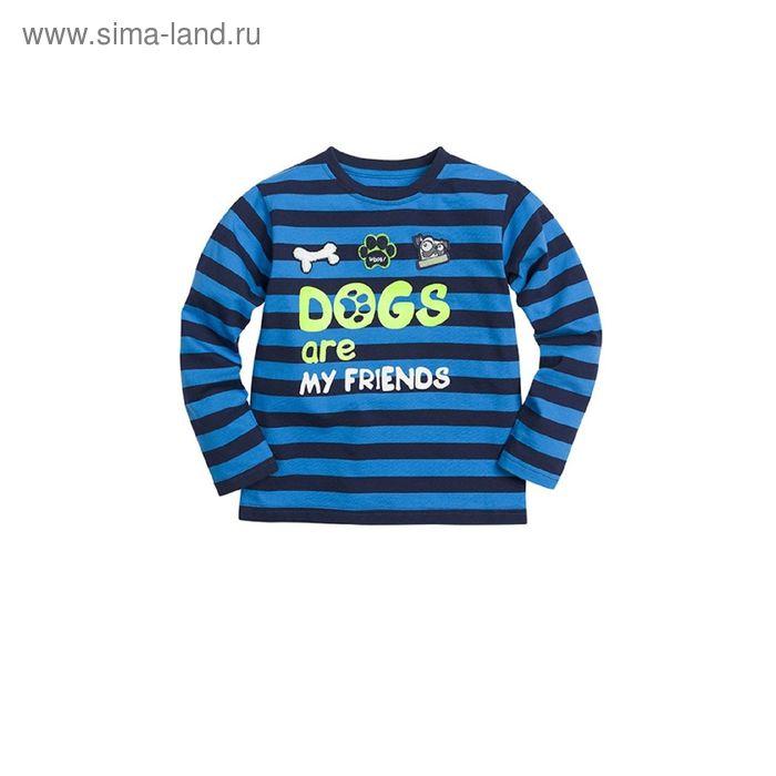 Джемпер для мальчиков, 5 лет, цвет Синий BJR376/1