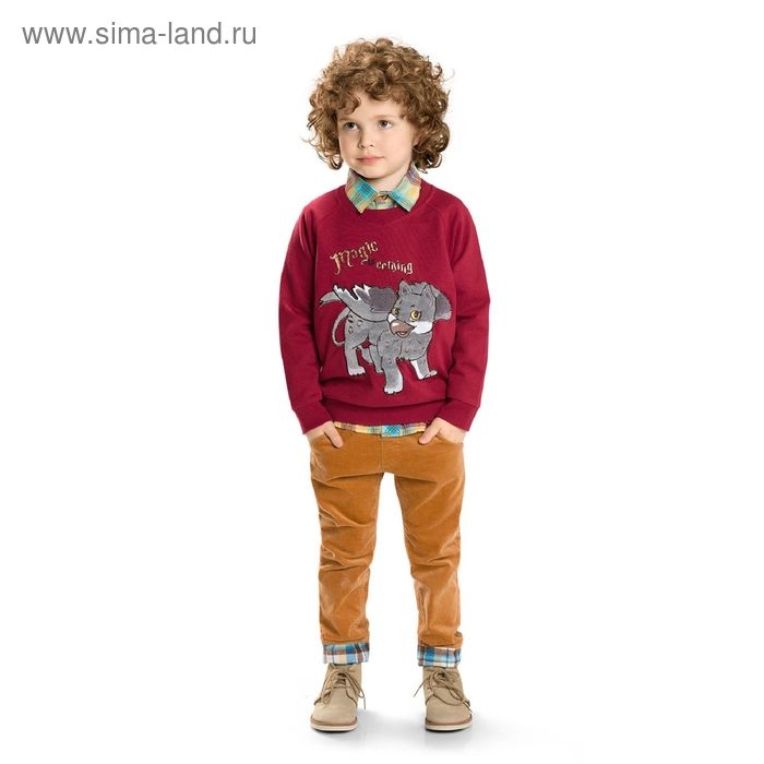 Джемпер для мальчиков, 1 год, цвет Бордовый BJR374
