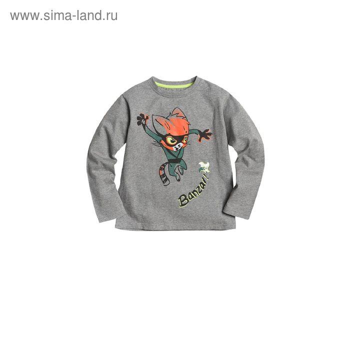 Джемпер для мальчиков, 5 лет, цвет Серый BJR373
