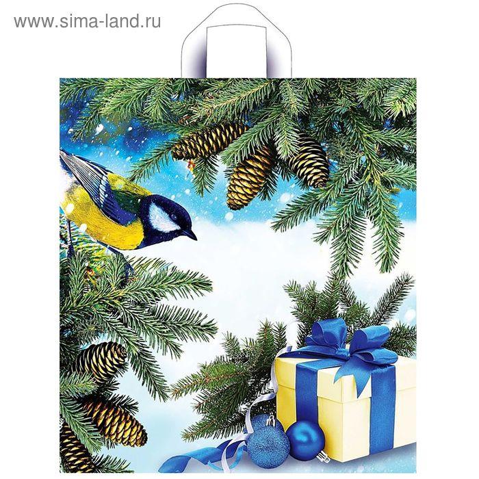 """Пакет """"Синичка на ветке"""", полиэтиленовый с петлевой ручкой, 42х38 см, 37 мкм"""