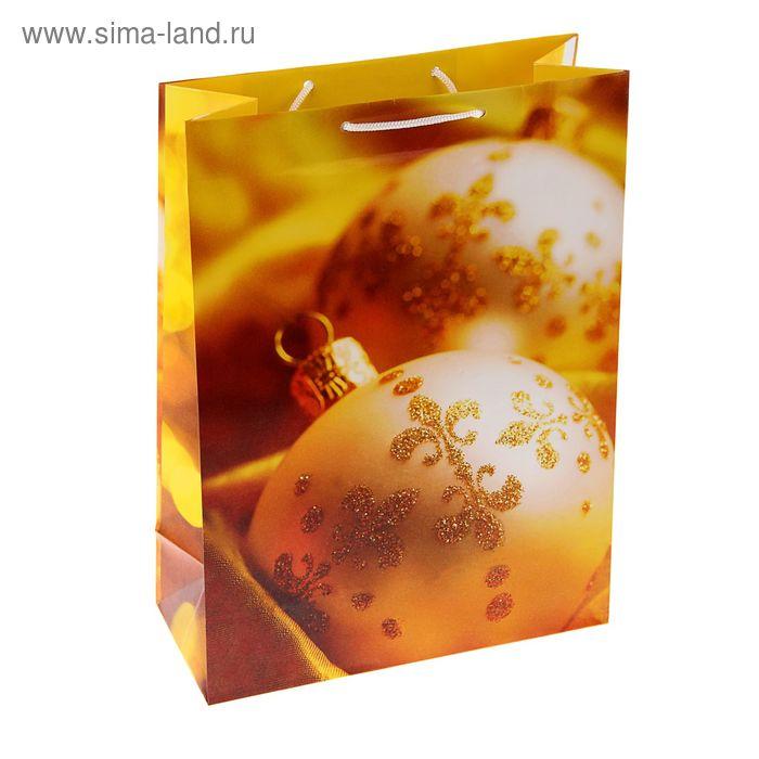 """Пакет подарочный """"Золотые украшения"""", 24 х 20.3 х 11.5 см"""