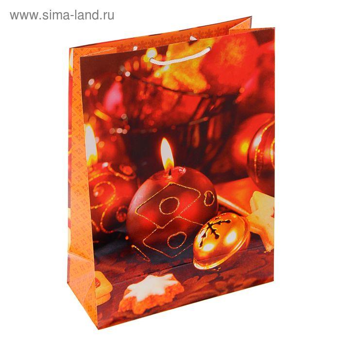 """Пакет подарочный """"Новогоднее сияние"""", 24 х 20.3 х 11.5 см"""