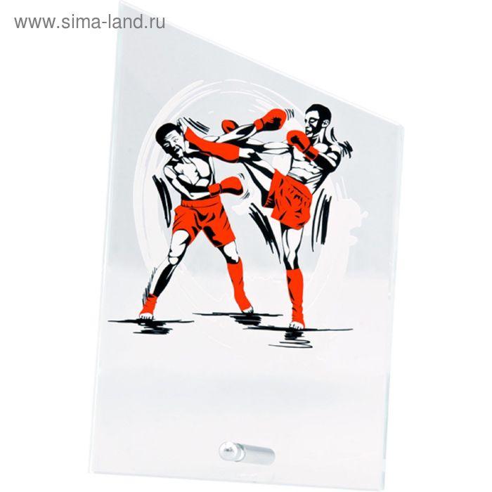 Награда стеклянная Кикбоксинг 12.5*20.5 см, SG1020/KB