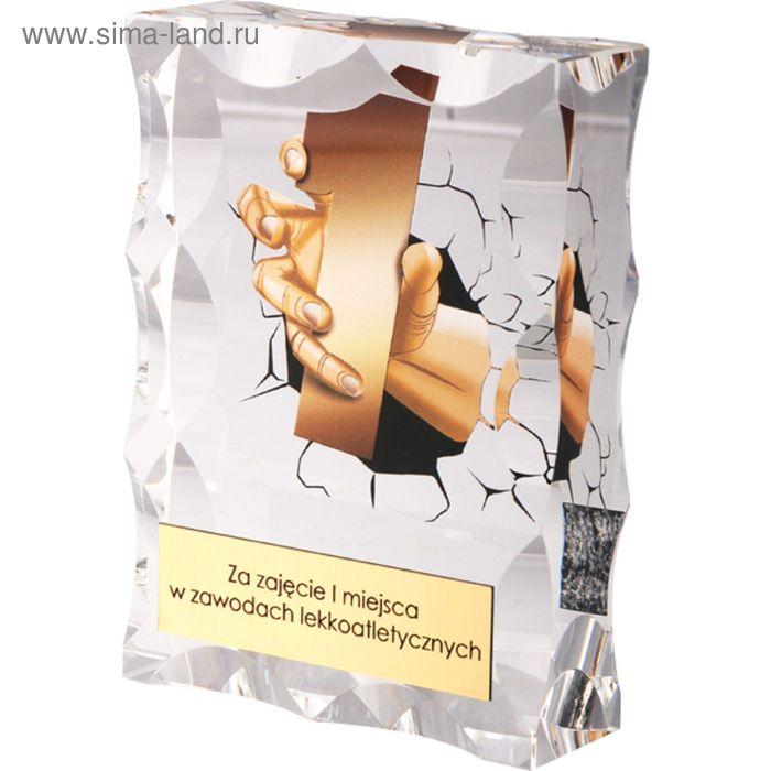 Награда хрустальная 1 место 12*9 см, KR12090/1