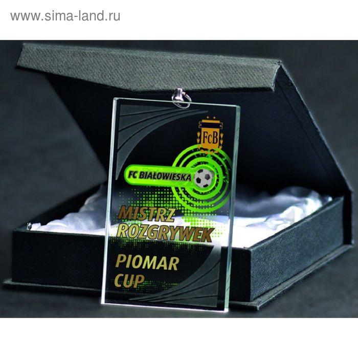 Награда хрустальная 70х40 см, в комплекте коробка GM7040