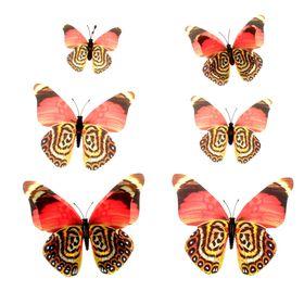 """Магнит """"Бабочка разноцветная"""", набор 6 шт., МИКС"""