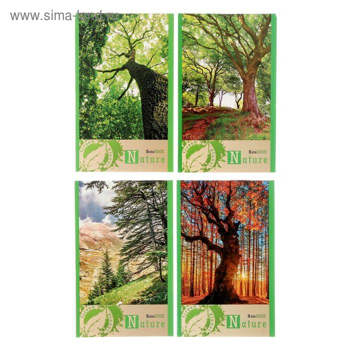 Блокнот А6, 32 листа на скрепке Green planet, микс