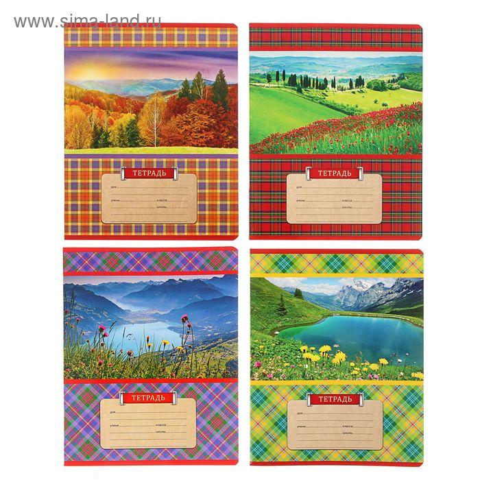 """Тетрадь 18 листов клетка """"Шотландка с природой"""", картонная обложка, МИКС"""