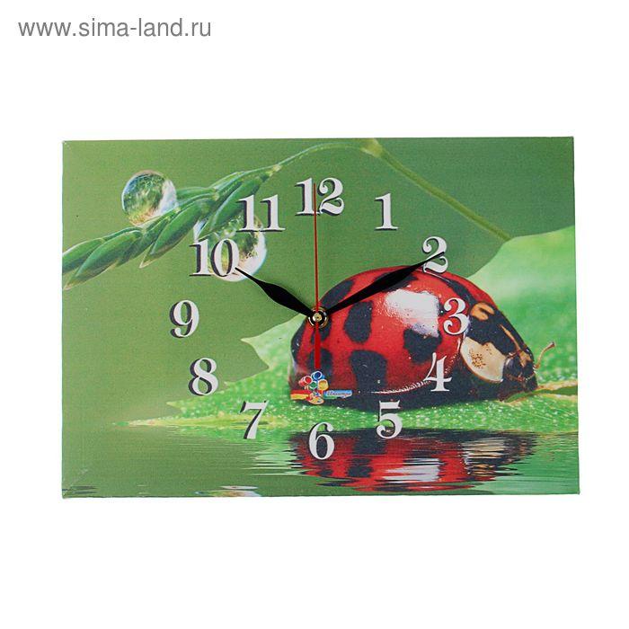 """Часы на холсте прямоугольные """"Божья коровка"""", 25х35 см"""