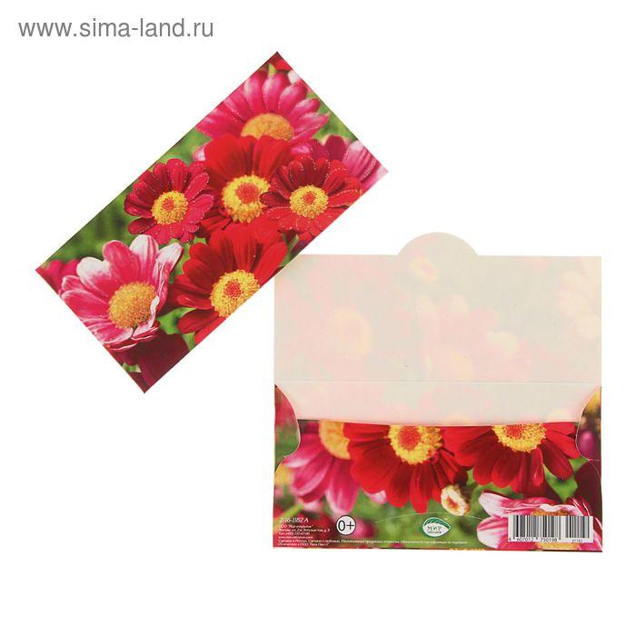 Конверт для денег универсальный; красные цветы, зеленый фон