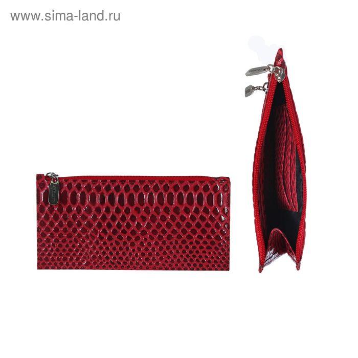 Кошелёк женский на молнии, 2 отдела, отдел для карт, 1 наружный карман, бордовая змея