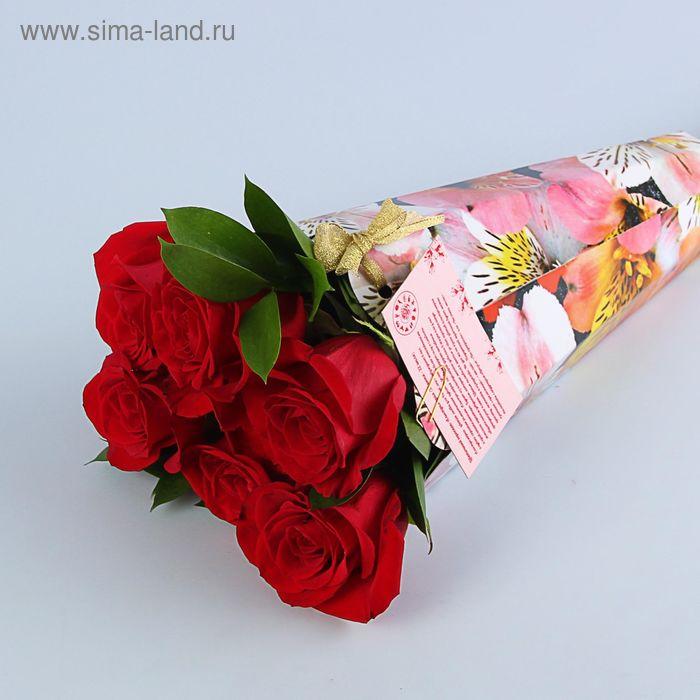 """Конус для цветов """"Альстромерия радуга"""" серия цветы, 27х13 см"""