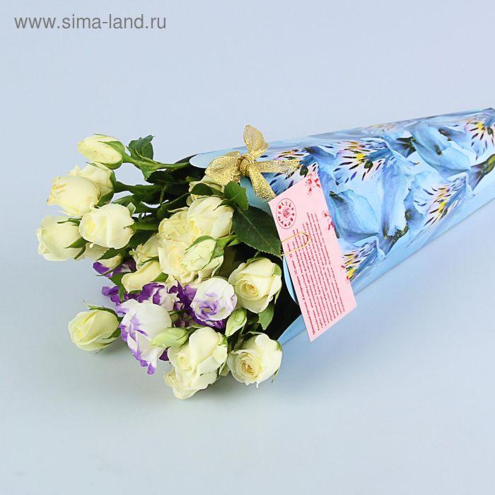 """Конус для цветов """"Альстромерия голубая"""" серия цветы, 27х13 см"""