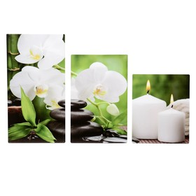 """Модульная картина на подрамнике """"Орхидея со свечами"""", 30×35, 30×46, 30×56 см, 90×56 см"""