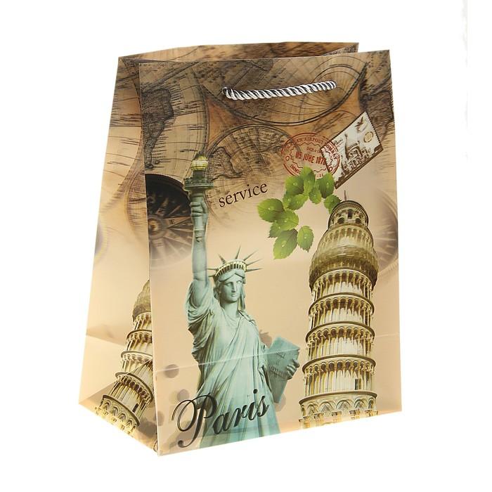 """Пакет пластиковый, 3D рисунок """"Статуя Свободы"""""""