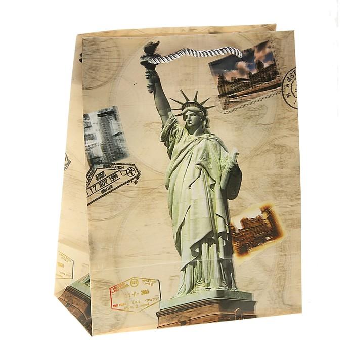 """Пакет пластиковый, 3D рисунок """"Свобода"""""""