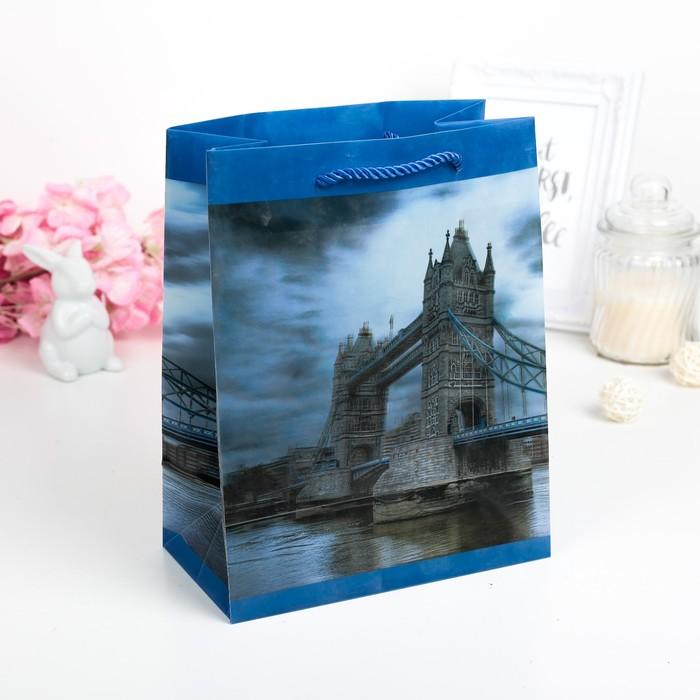 """Пакет пластиковый, 3D рисунок """"Тауэрский мост"""""""