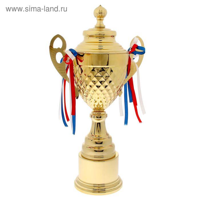 Кубок спортивный 067