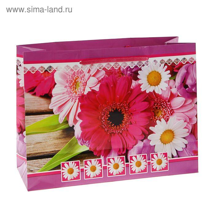 """Пакет подарочный """"Виола"""" 32,5 x 24,5 x 12 см"""