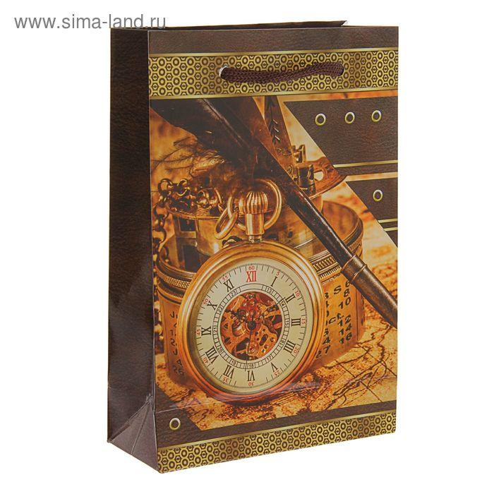 """Пакет подарочный """"Время-золото!"""" 17,5 х 11,5 х 5 см"""