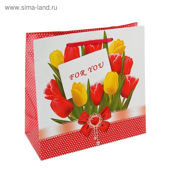 "Пакет подарочный ""Весенние тюльпаны"" 23 х 22.5 х 10 см"