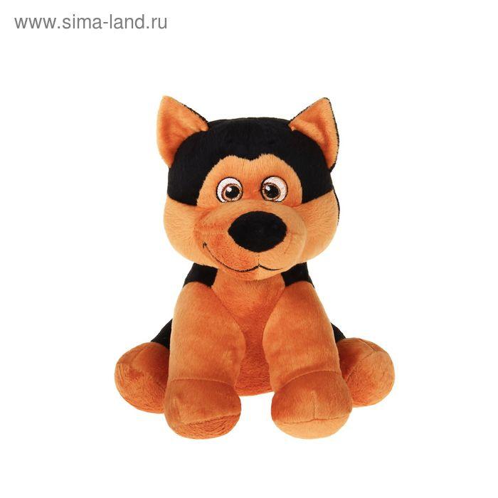 Мягкая игрушка «Щенок Джек», цвет МИКС